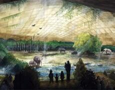 Wilhelma Elefantenwelt